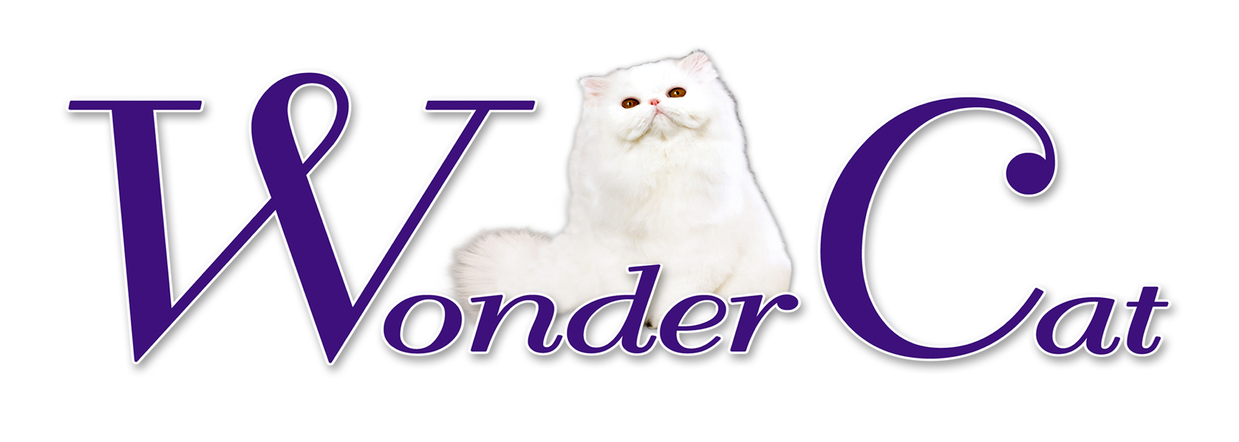LITTER WONDER CAT
