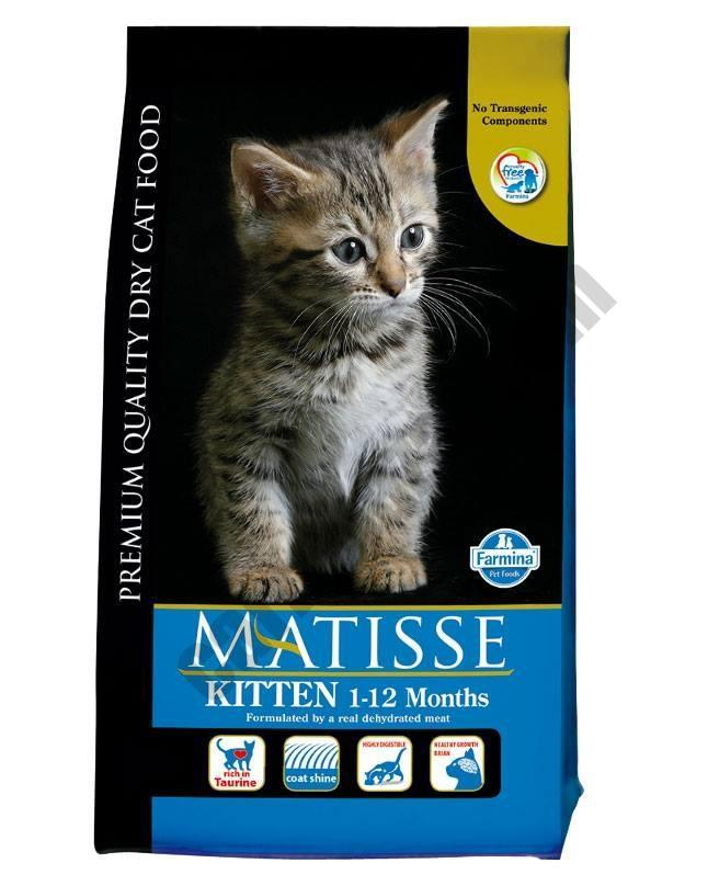 Matisse Kitten - Pet Food - Pet Store - Pet supplies