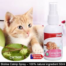 Bioline Catnip Spray