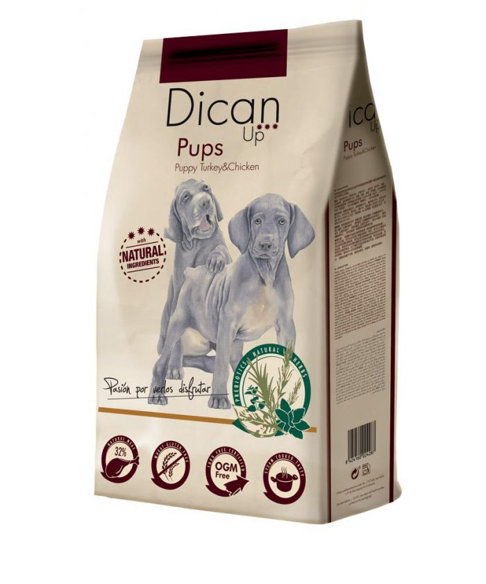 Dican Up Pups