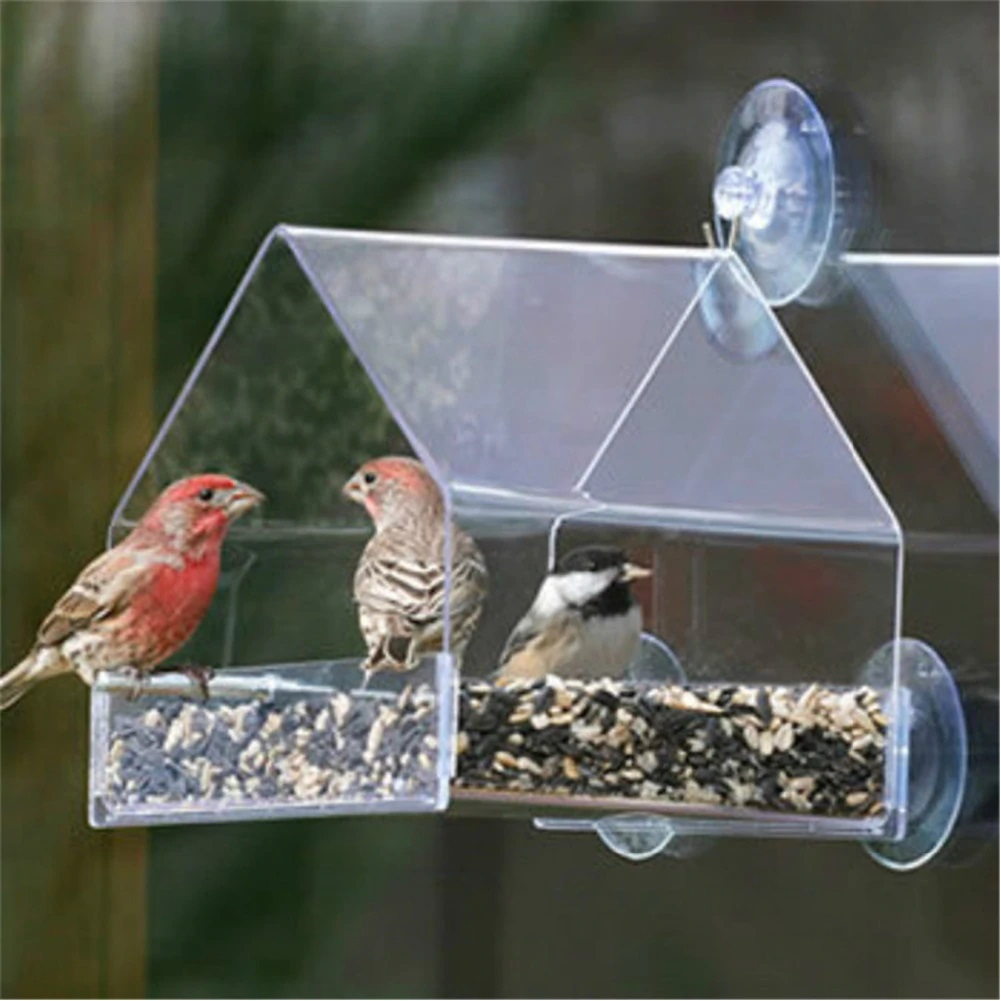 Parrot Lovebird Canary Aviary Transparent Window Outdoor Bird Feeder For Birds Feeding Container For Food Pigeon Pet Supplies - Pet Accessories - Pet Store - Pet supplies