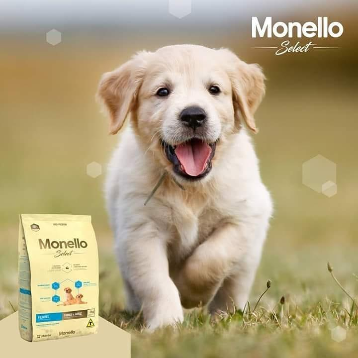 Monello Select Puppy chicken & Rice