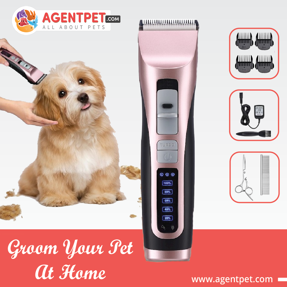 Hair Trimmer For Dogs Cats Pets