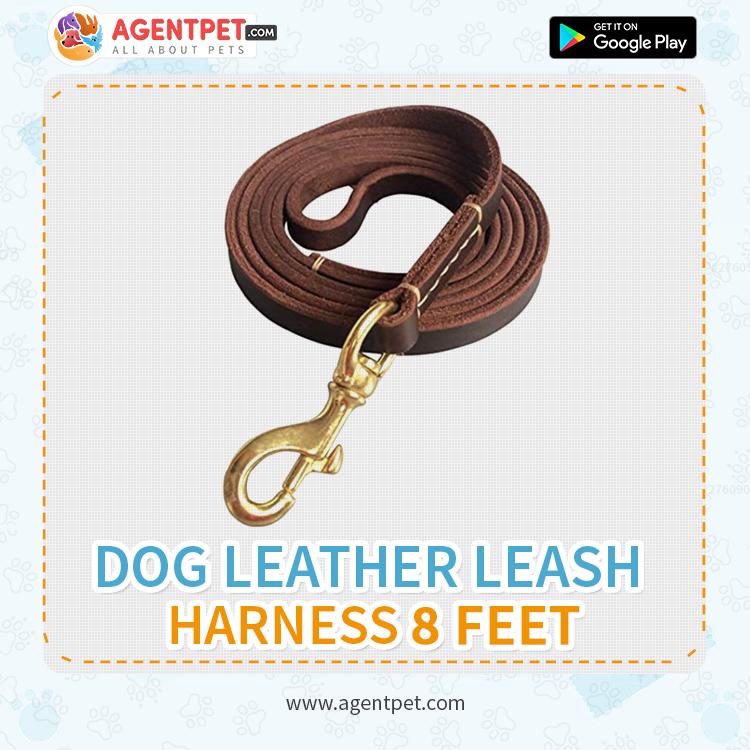 Dog Leather Leash Harness 8 Feet - Pet Accessories - Pet Store - Pet supplies