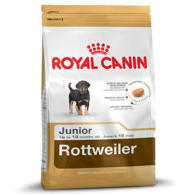 Royal Canin Rottweiler Puppy/Junior - Pet Food - Pet Store - Pet supplies