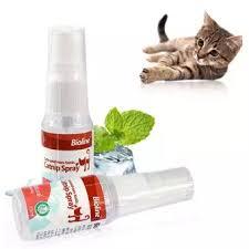 Bioline Catnip Spray - Pet Accessories - Pet Store - Pet supplies
