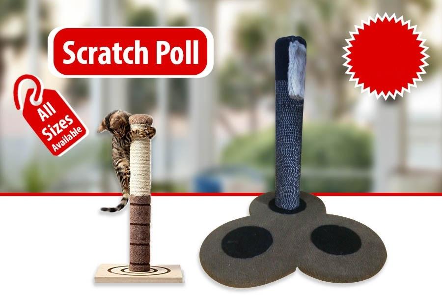 Scratch Poll For Cats - Pet Accessories - Pet Store - Pet supplies