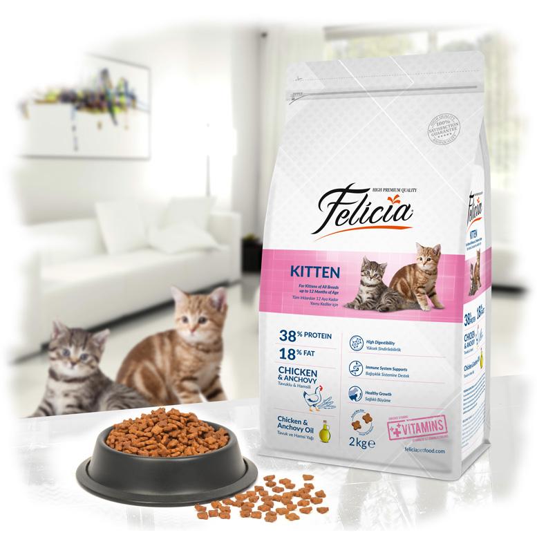 Felicia Kitten Chicken - Pet Food - Pet Store - Pet supplies