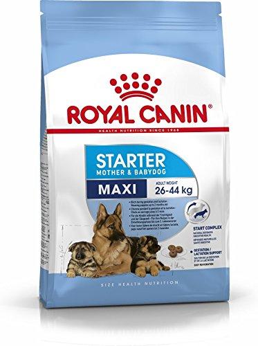 Royal Canin Maxi Starter - Pet Food - Pet Store - Pet supplies