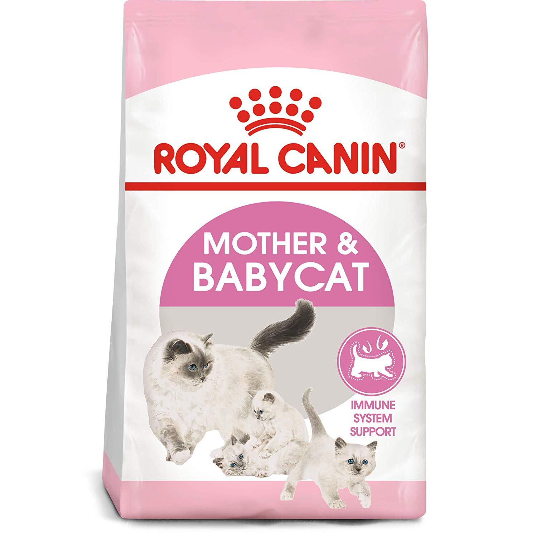 Royal Canin Mother & Baby Cat - Pet Food - Pet Store - Pet supplies