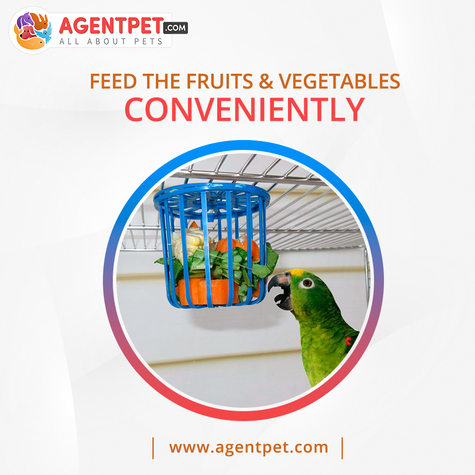 Bird Parrot Feeder Cage Fruit Vegetable Holder Cage