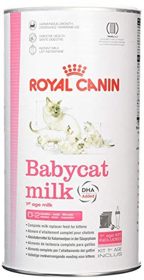Kitten Milk Royal Canin 300 g - Pet Food - Pet Store - Pet supplies