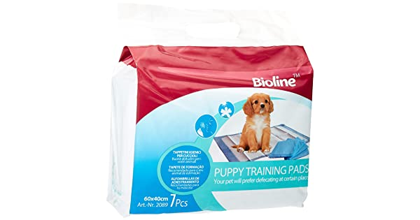 Bioline Training Pad