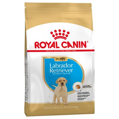 Royal Canin Labrador junior / Puppy