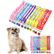 Cats And Puppy Coller - Pet Accessories - Pet Store - Pet supplies