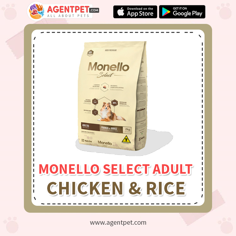 Monello Select Adult Chicken & Rice