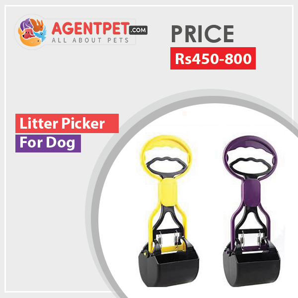 Litter Picker For Dogs Cats - Pet Accessories - Pet Store - Pet supplies