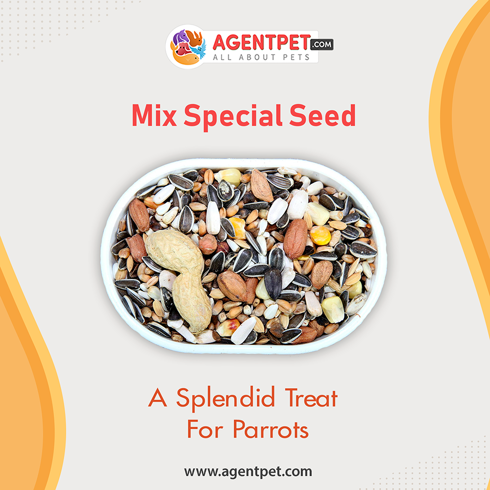Mix Special Seed For Parrots Birds 1 kg