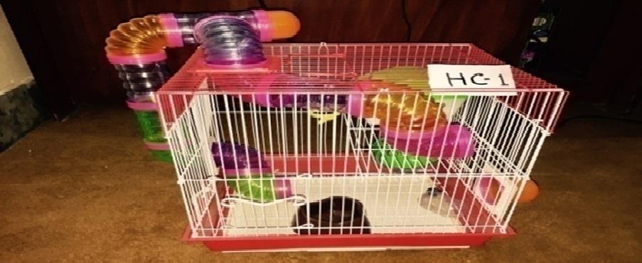 Hamster Cage - Pet Accessories - Pet Store - Pet supplies
