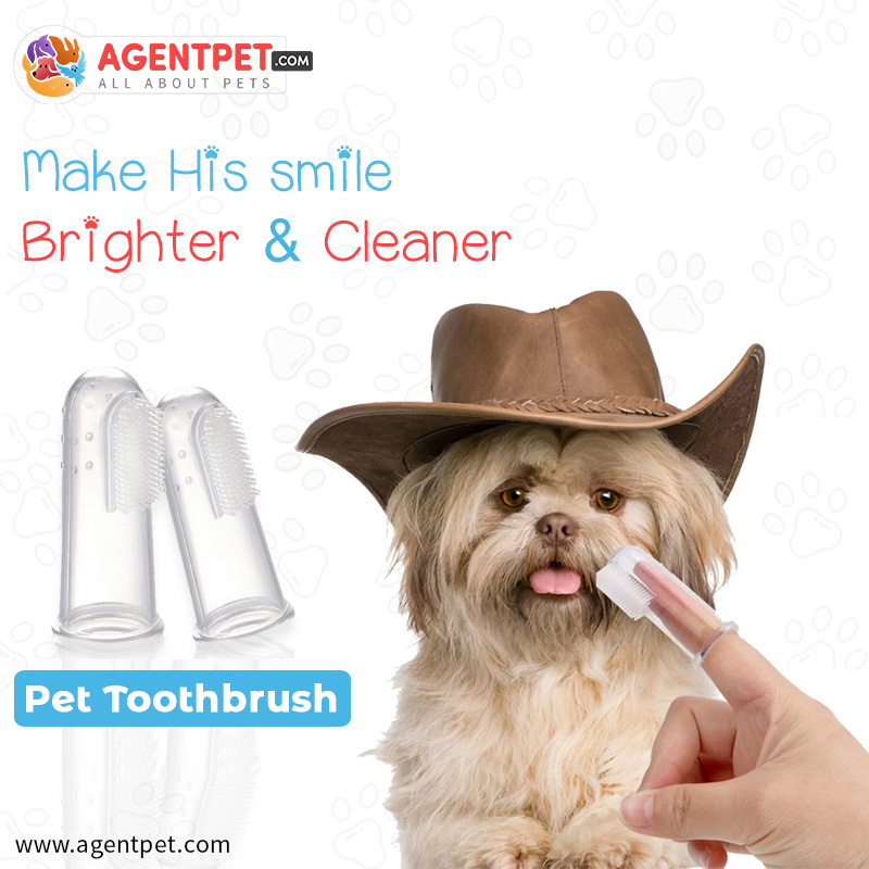 ToothbrushTeeth Care Brush Soft Dog Cat Cleaning
