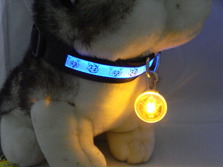 Flashing Led Luminous Dogs Glowing Collars Cat Dog Pendants Pet Night Safety Accessories Para Cachorro Trinkets For Animals - Pet Accessories - Pet Store - Pet supplies