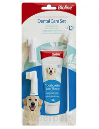 Dental Hygiene Set