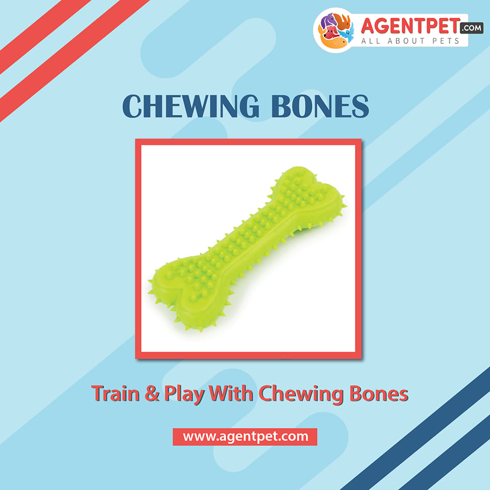Chewing Bones For Cats And Dogs