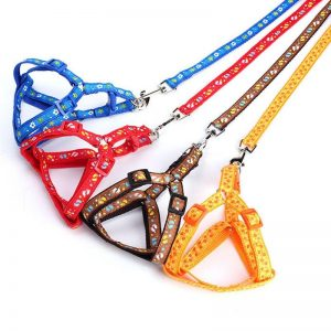 Dog Cat Harness Leash Collar