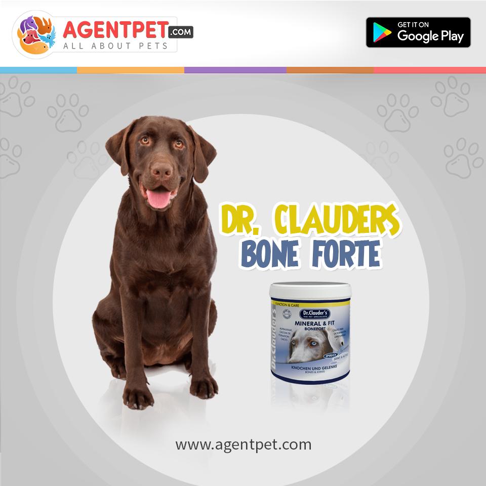 Dr. Clauders Bone Forte - 500g - Pet Food - Pet Store - Pet supplies