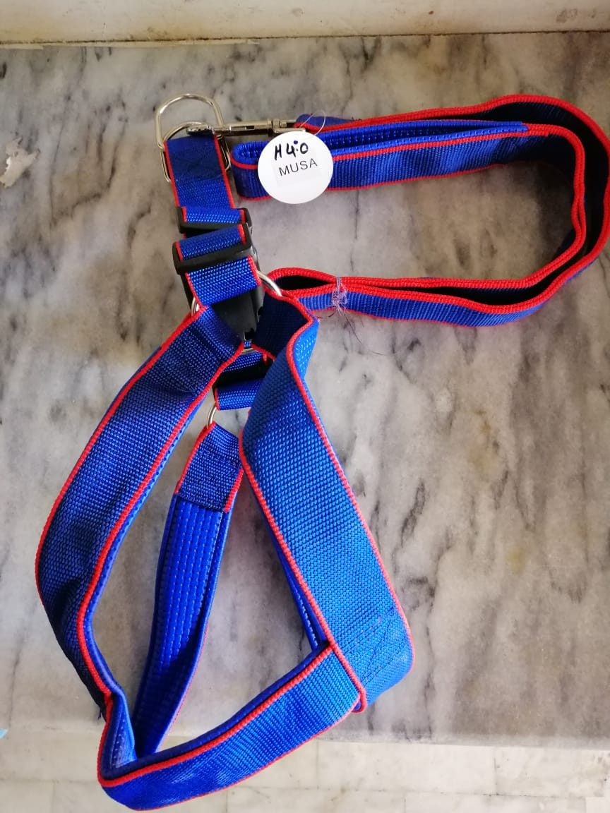 Harness For Dogs - Pet Accessories - Pet Store - Pet supplies