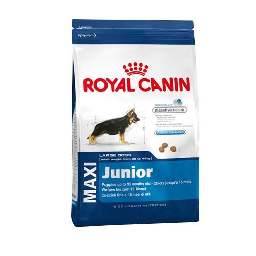 Royal Canin Maxi Junior - Pet Food - Pet Store - Pet supplies