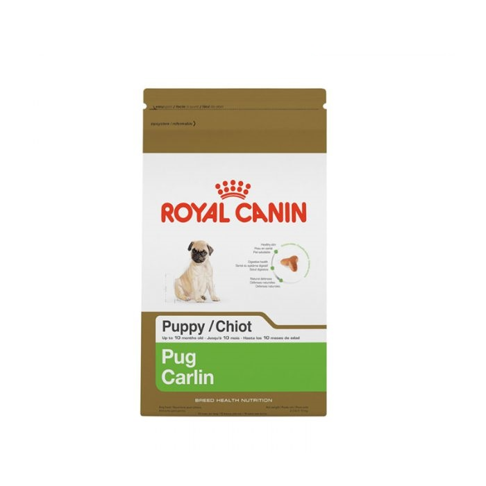 Royal Canin Pug Junior/Puppy 1.5 Kg - Pet Food - Pet Store - Pet supplies