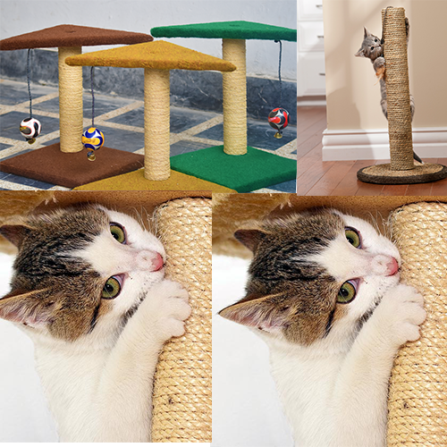 Scratching Post for Cats Kitten - Pet Accessories - Pet Store - Pet supplies