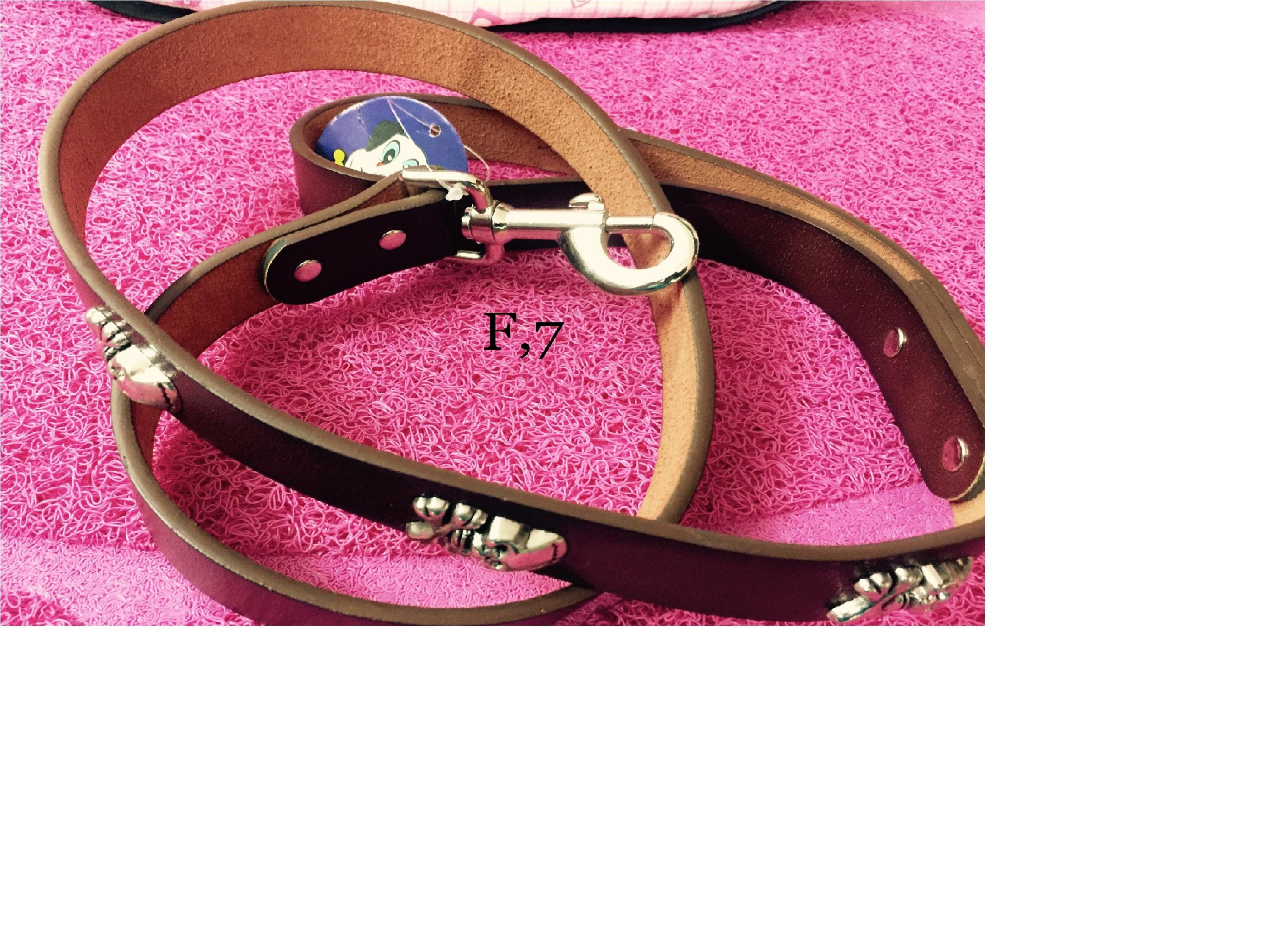 Leather Belt - Pet Accessories - Pet Store - Pet supplies