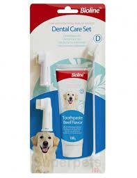 Dental Hygiene Set - Pet Accessories - Pet Store - Pet supplies