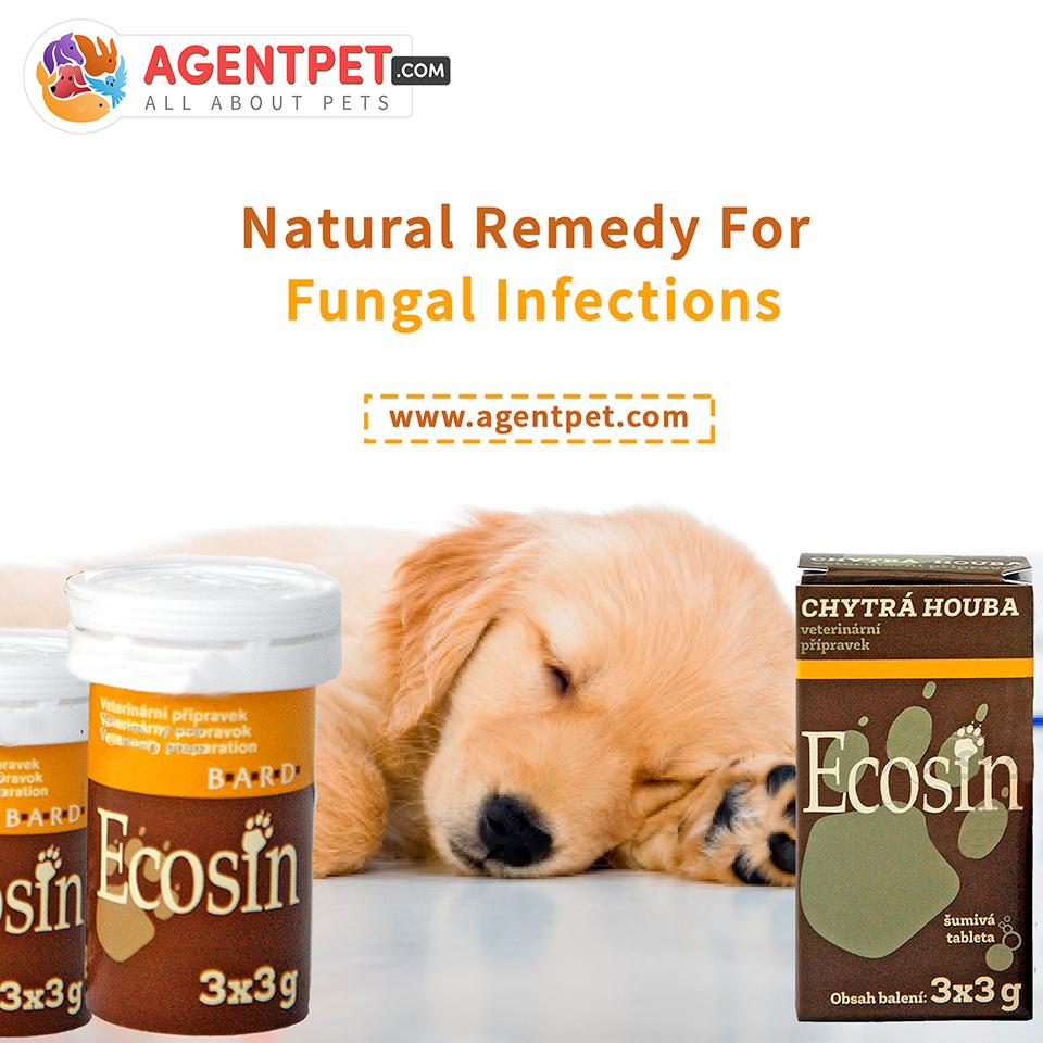 ECOSIN 3X3 G - Pet Food - Pet Store - Pet supplies