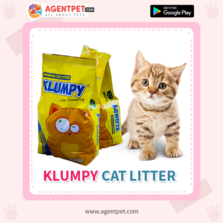 Klumpy Cat Litter