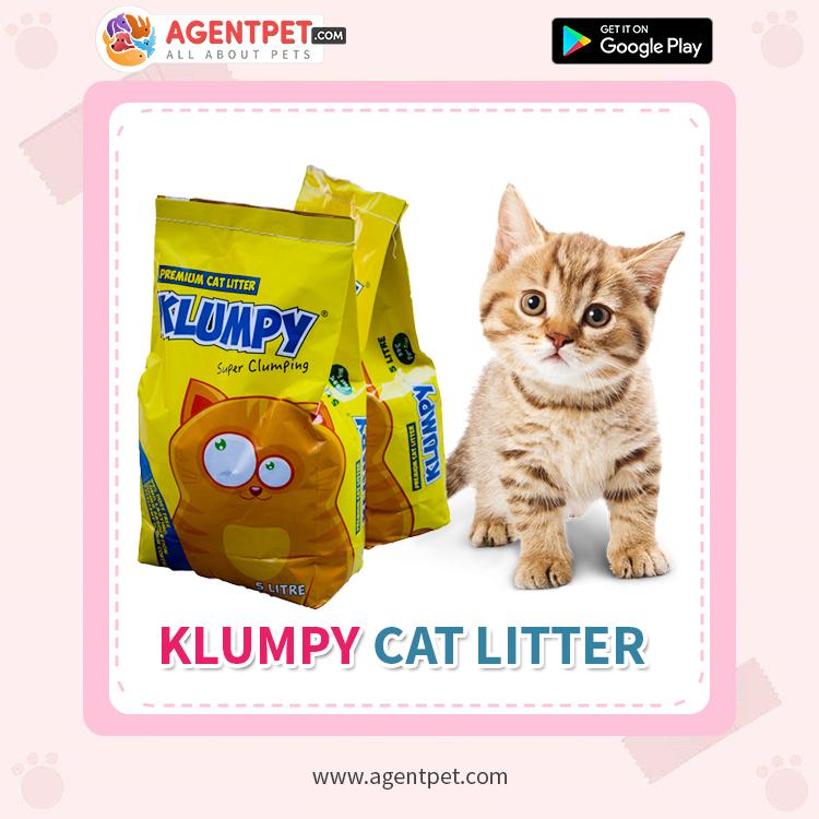 Klumpy Cat Litter