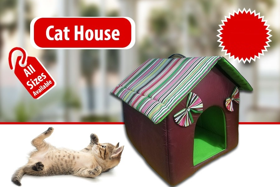 Cat House in Cotton